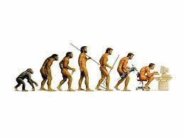 Social biology