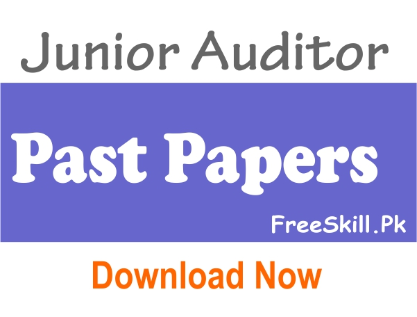 Junior Auditor Past Papers NTS Download